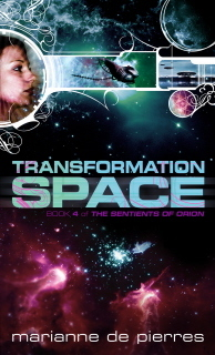 transformationspace